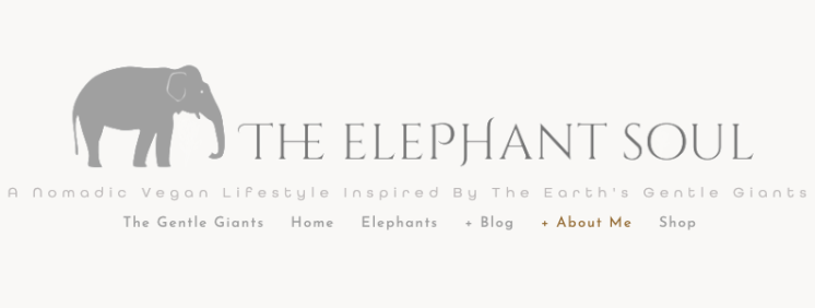the elephant soul blog