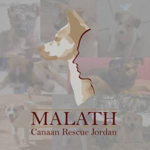 malath canaan rescue jordan