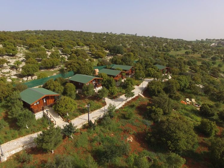 mountain breeze amman lodges
