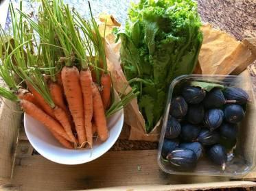 organic carrots kale figs amman