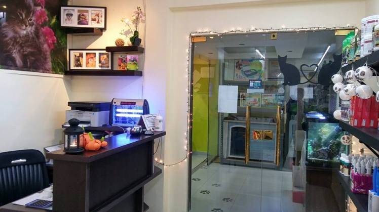 first pet vet clinic amman