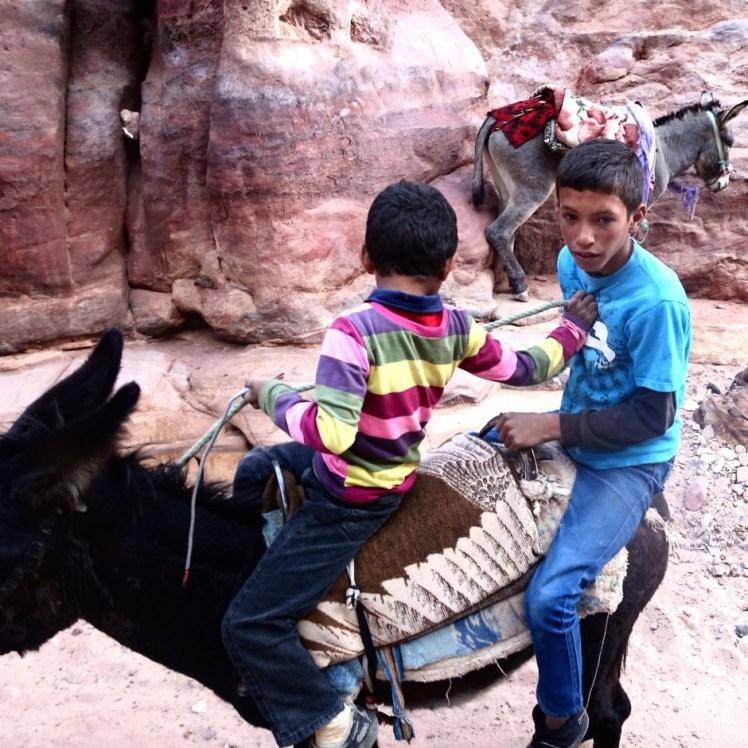 child labor donkey petra