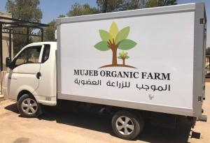 mujeb organic farm amman