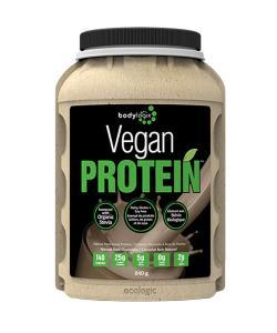 body logix vegan protein amman