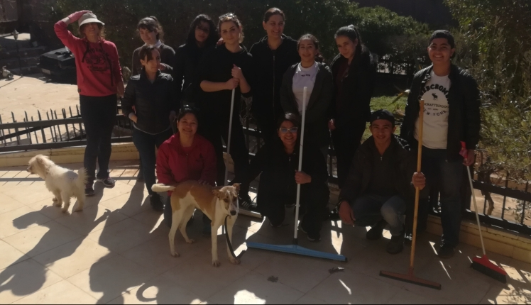 volunteers al rahmeh animal rescue jordan