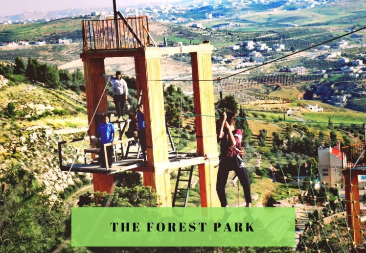 the forest park amman