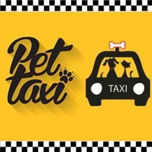 pet taxi jordan