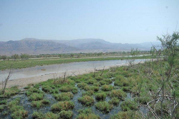 fifa nature reserve jordan